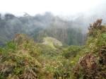 View of Machu Picchu from Machu Picchu Mountain.